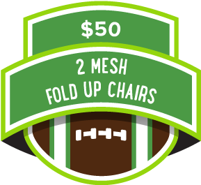 $50 2 Mesh Fold Up Chairs