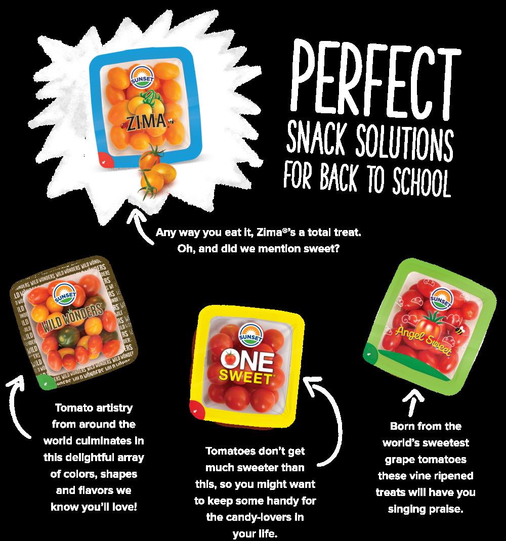 snack solutions desktop