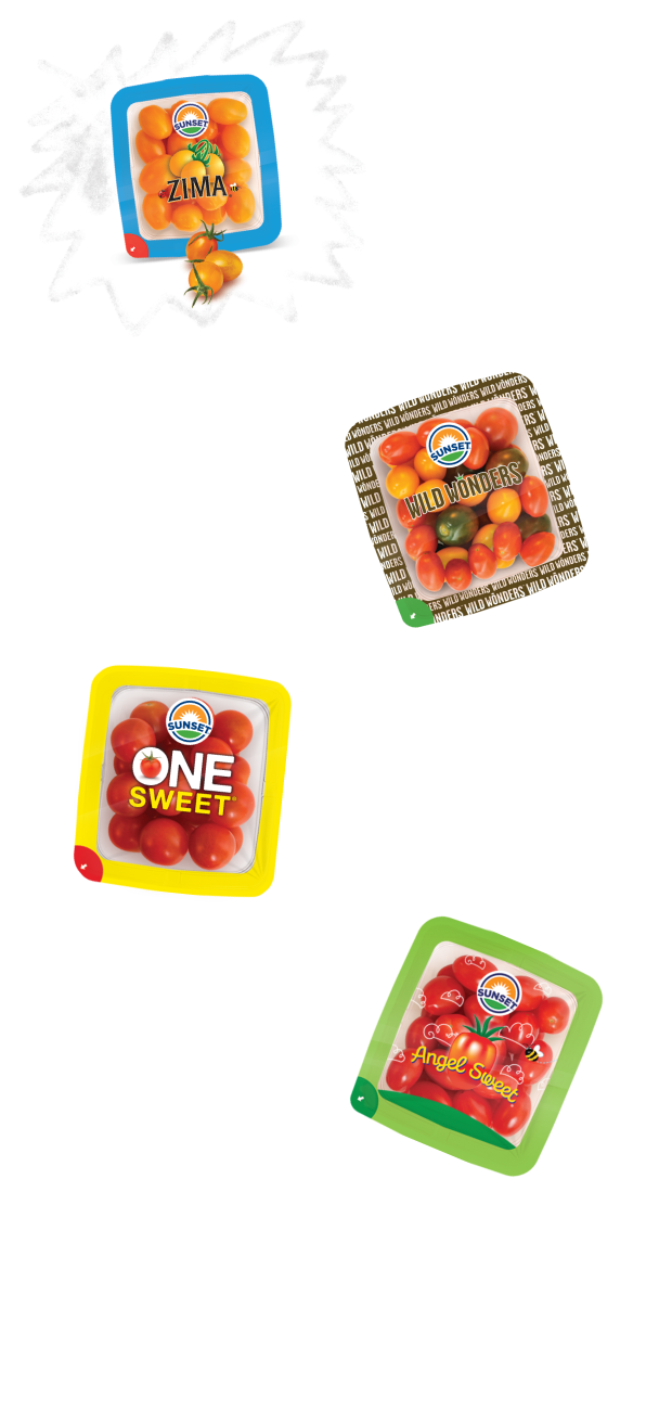 snack-solutions-tablet